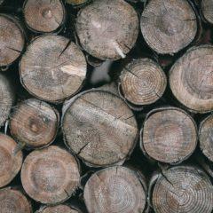 Raw Wood Theme