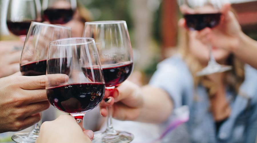 group drinking red wine at a winefarm in the cape town winelands
